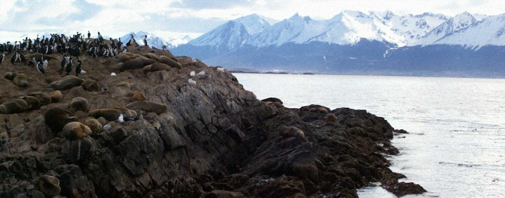 Patagonia Austral